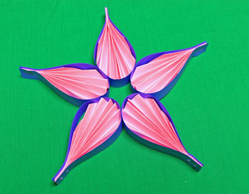 Pleated Five-Point Star